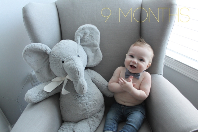 Teddy is 9 Month Olds